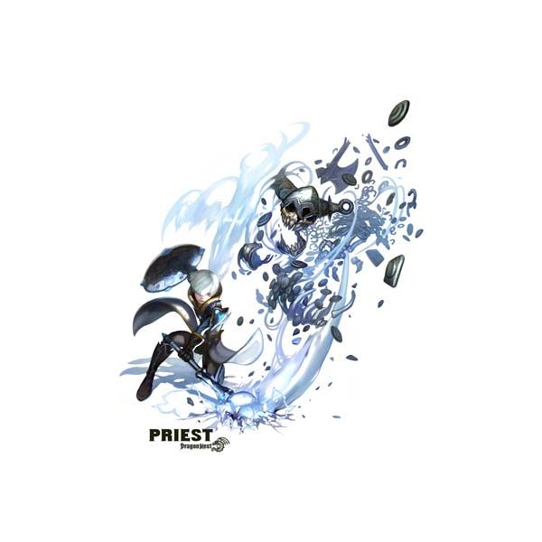 Dragon Nest Priest Guide