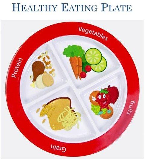 STEM Science Healthy Eating Plate