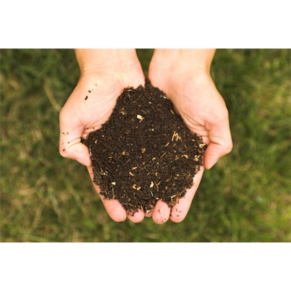 Real Compost