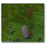 Barb-tailed Kebbit in Runescape