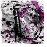 Grunge Ink Splats PSP8 Brushes by iceytina