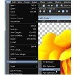 Select GIF Optimizer