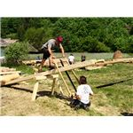 Traditional Carpenters