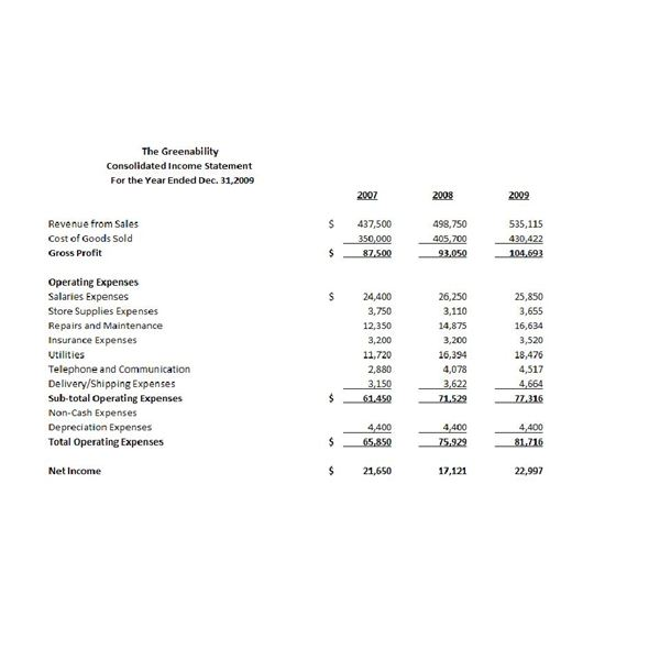 Sample Consolidated Income Statement