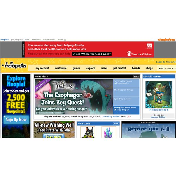 Best Cheat Codes for Free Neopets - Rare Item Code for Neopets