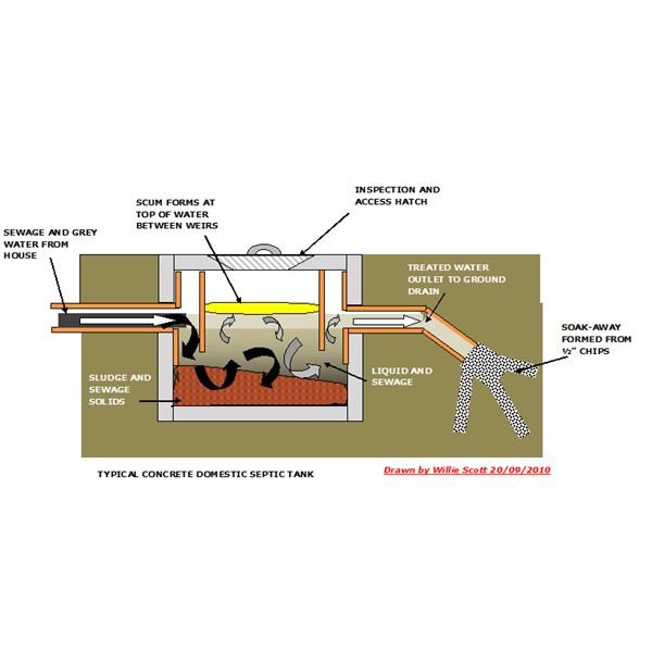 Role Of Bacteria And Enzymes In Septic Tank Systems