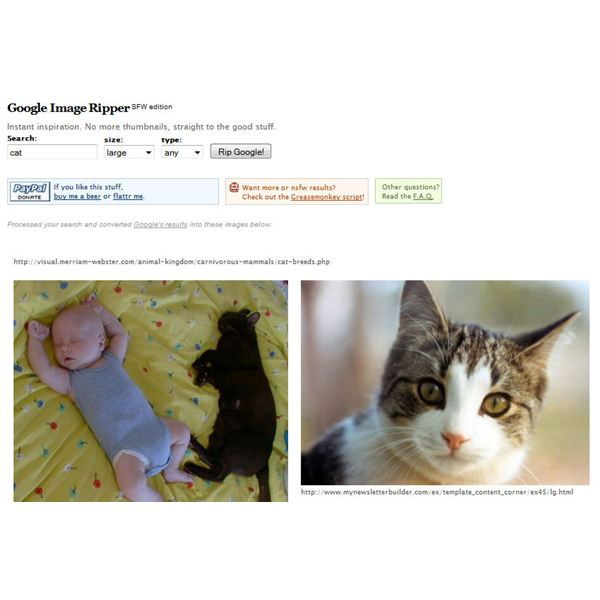 Some Cool Ways to View Google Images