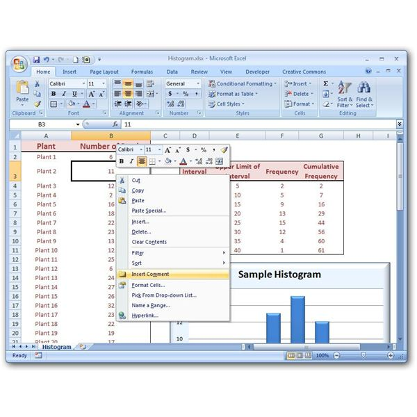 how to put histogram in excel 2007