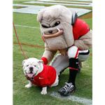Uga (Photo credit: http://www.georgiadogs.com)