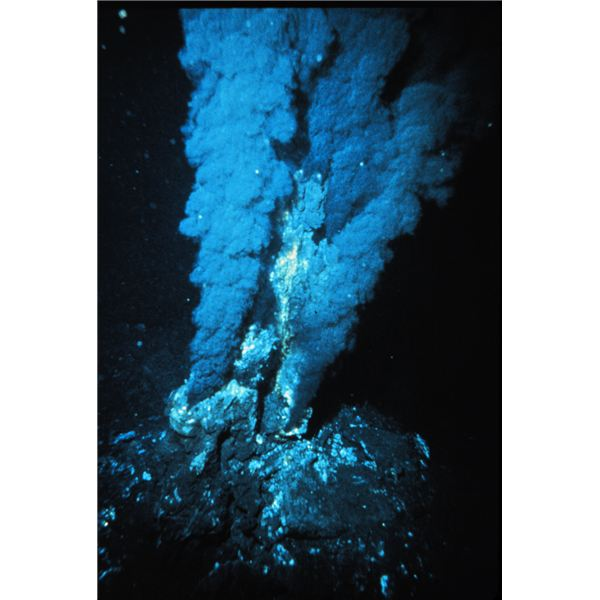 A Deep Sea Hydrothermal Vent