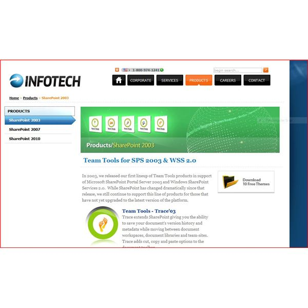 Infotech Canada master themes