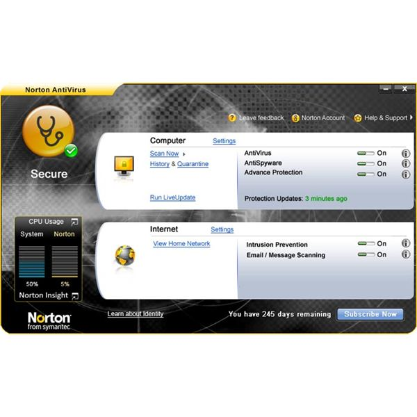 Norton Antivirus 2009 Main Window