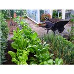 Planning a garden shows what your students have learned.