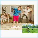 Wii Fit Family