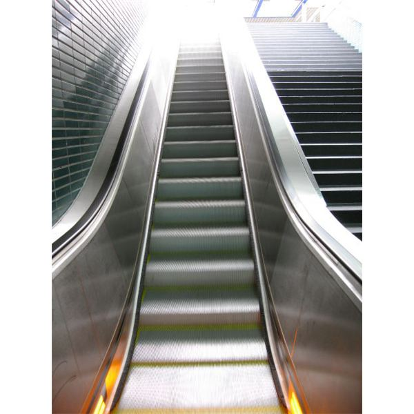 Find Out Why Do Project Managers Need Escalation Procedures - Real Life Examples