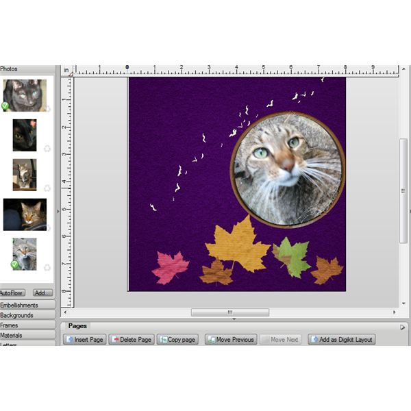 frame resized and a new cat photo inserted- photo resized to fit automatically