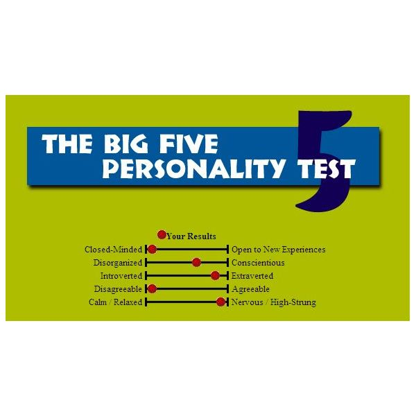 Screenshot Big 5 Personality Test Results