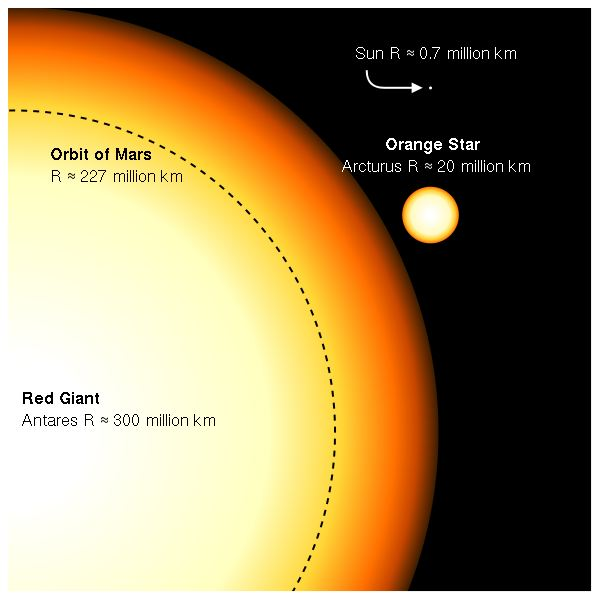 Size Comparisons Among Antares, Arcturus, the Sun and the Orbit of Mars
