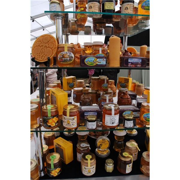 Honey: What are the Health Benefits of Honey?