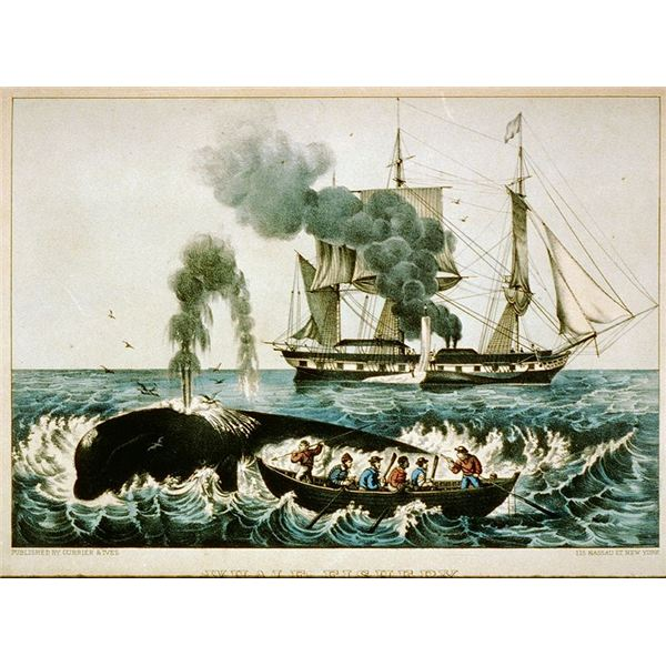 18th & 19th Century Whaling Industry Around the Globe: Part of a Series on the History of Whaling
