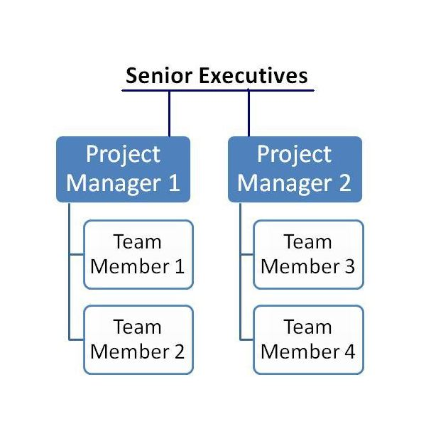 Projectized Organizational Structure