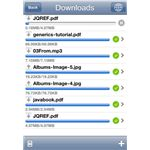Downloader and File Sharing iPhone App