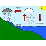 800px-Simple Water Cycle