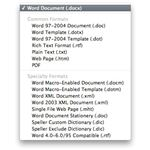 Choose a format to save as in Microsoft Word for iMac