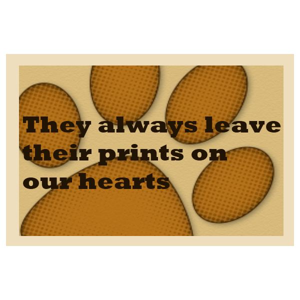 7 free sympathy cards for dog owners download send to comfort in