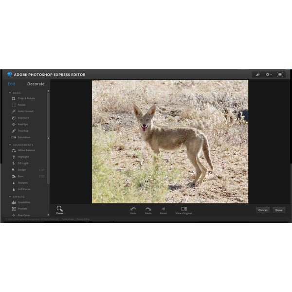 Quick Photoshop Express Tutorial: Improve Your Photos in a Snap