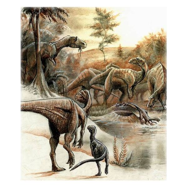 What are the Different Types of Dinosaurs?