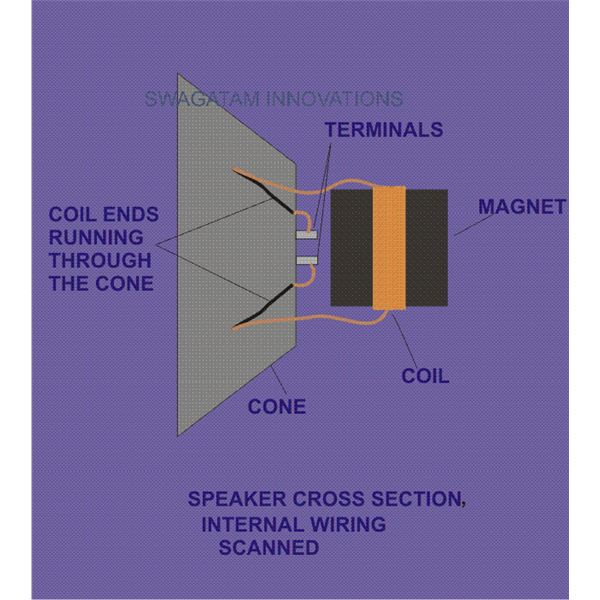 Speaker Internal Wiring, Diagram, Image
