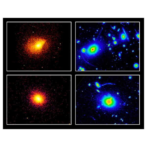Galaxy Cluster Roentgen and Gravity Lense