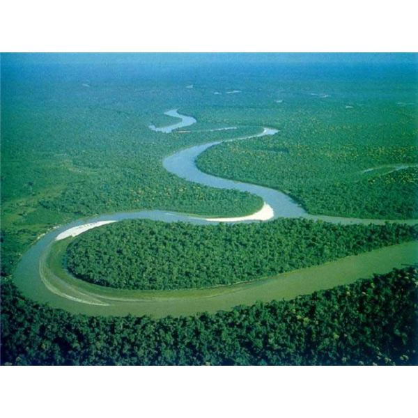 How Are The Amazon, Nile, And Mississippi Rivers Alike?