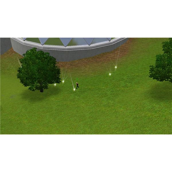 Searching for Life Fruit in The Sims 3