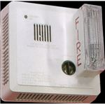 Fire Alarm System Home