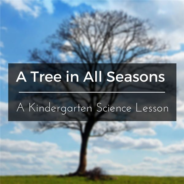 Kindergarten Science Lesson Plan: Trees and the Four Seasons