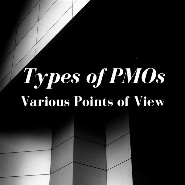PMO Types: Comparing Gartner and PMI Points of View
