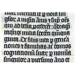 """Calligraphy in a Latin Bible of AD 1407"