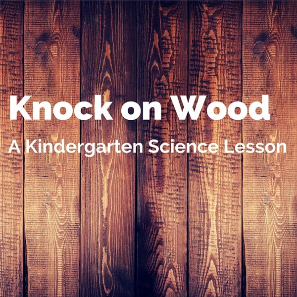 Teaching Kindergarten Students about Wood: STEM Lesson Plan Ideas
