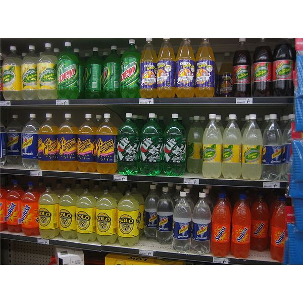 Leptin Resistance and the Danger of High Fructose Corn Syrup