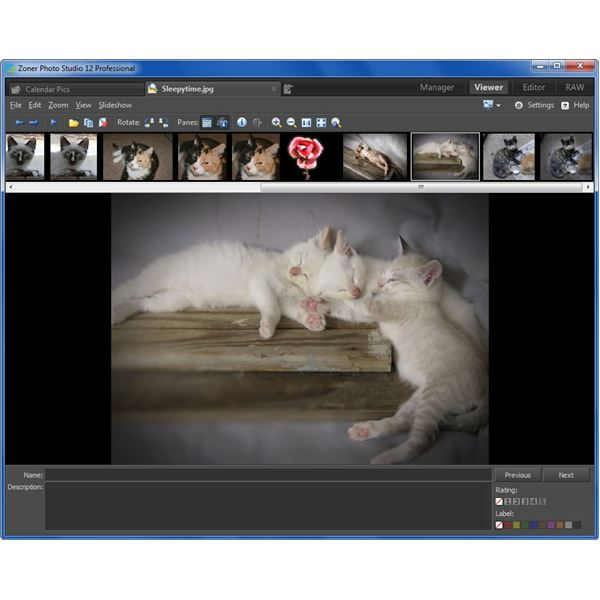 Viewer Tab in Zoner Photo Studio 12