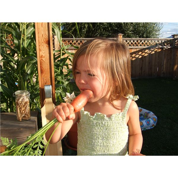 Why Organic Food is Best for Baby - Tips to Keep Harmful Pesticides Out of Your Child's Diet