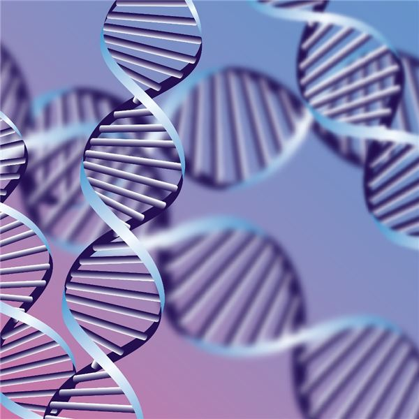 A Brief Intro to the Causes of Gene & Chromosome Mutations, Both Spontaneous and Induced