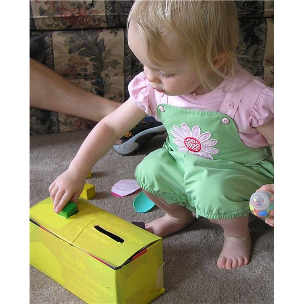 shape sorter with only 2 shapes