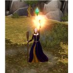 The Sims Medieval Wizard Performing Spell 2