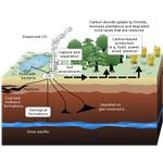 Process of Carbon Sequestration