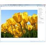 Windows Live Photo Gallery: Microsoft's iPhoto for Windows Users