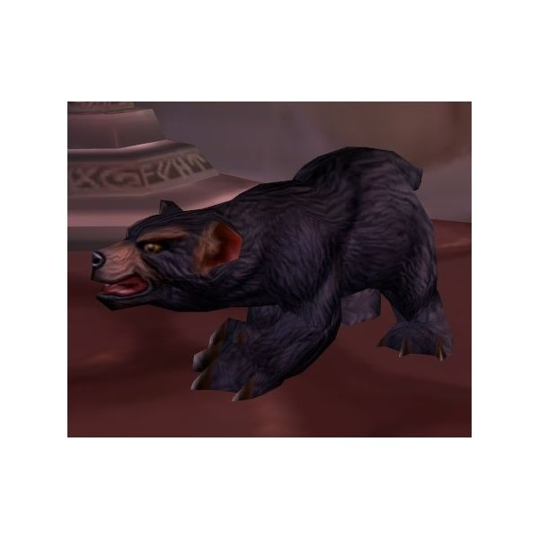 The%20Dun%20Morogh%20Cub%20is%20the%20Ironforge%20non-combat%20pet
