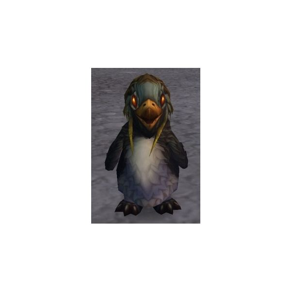 Pengu is a non-combat pet reward from being Exalted with the Kalu'ak